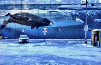 seaworldparking_sml